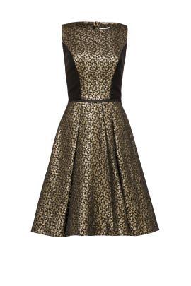 Gina Dress by pamella by pamella roland