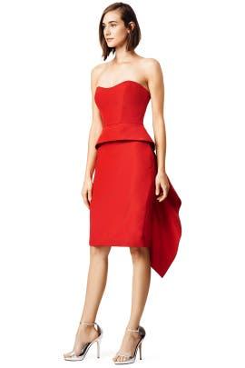 Monique Lhuillier - Presenting Dress