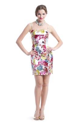 D&G by Dolce and Gabbana - Botanical Beauty Dress