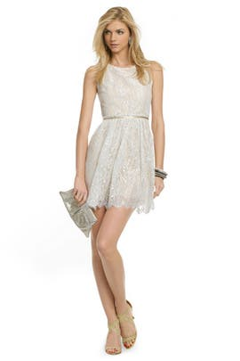 So Delicate Dress by ERIN erin fetherston
