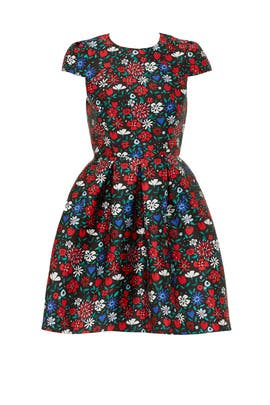Floral Paris Dress by Shoshanna