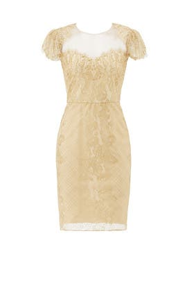 Sweetheart Sheath by Marchesa Notte