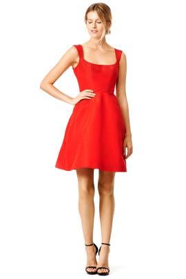 Monique Lhuillier - Perfect Frame Dress