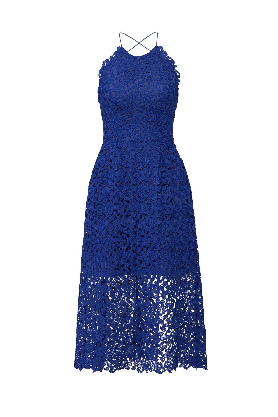 Cobalt Lace Midi Dress by Slate & Willow for $40 - $55 | Rent the Runway