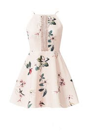 Pink Do It Right Dress by Keepsake
