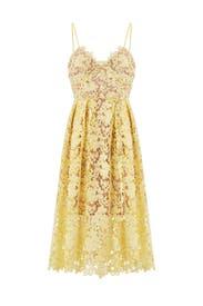 Yellow Lace Midi Dress by Slate & Willow