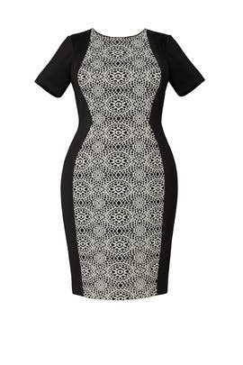 Bonded Lace Block Sheath Dress by Adrianna Papell