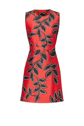Red Printed Vine Dress by MSGM