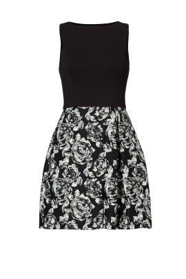 Black Printed Emily Dress by Hutch