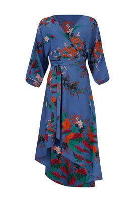 Camden Cove Wrap Dress by Diane von Furstenberg