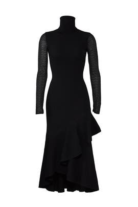 Brose Roll Neck Dress by Temperley London