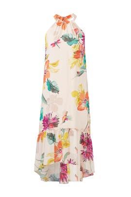 Floral Rosales Dress by Trina Turk