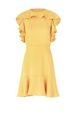 Marigold Emery Dress by Amanda Uprichard