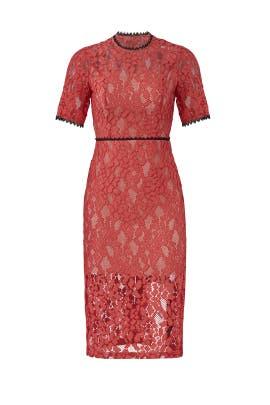 Remi Dress by Alexis