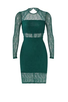 Green Sheer Lace Sheath by Ali & Jay