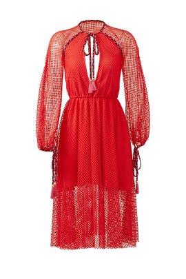 Sienna Lace Dress by Philosophy di Lorenzo Serafini