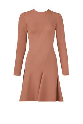 Bois De Rose Dress by Carven