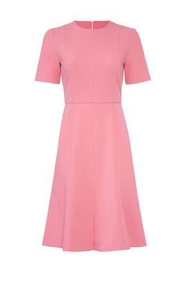 Pink Fit And Flare Dress by Donna Morgan