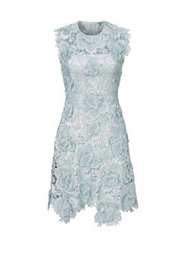 Blue Lace Fjola Dress by CATHERINE DEANE