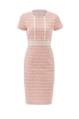 Coral Stacie Dress by Shoshanna