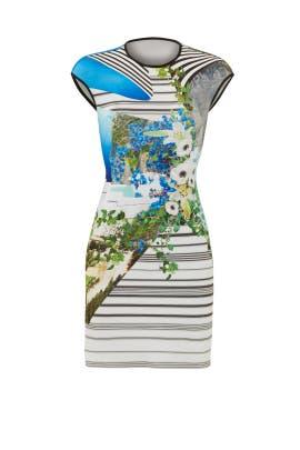 Corfu Swirl Dress by Clover Canyon
