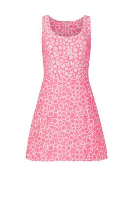 Joslin Dress by Lilly Pulitzer