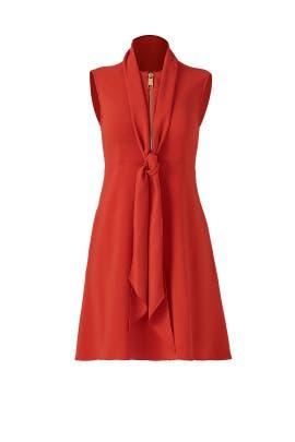Orange Spice Kassidy Dress by Rachel Zoe