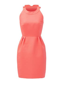 Bow Back Cupcake Dress by kate spade new york