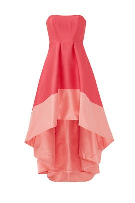 Gladiolus Dress by ML Monique Lhuillier