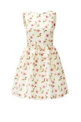 White Daisy Dress by RED Valentino