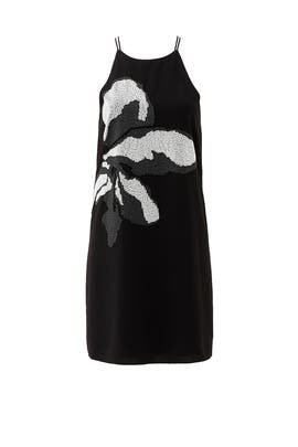 Orchid Embroidered Shift Dress by Halston Heritage