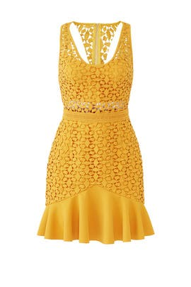 Solana Cut Out Dress by STYLESTALKER