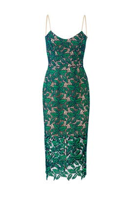 Green Lace Aurora Dress by Dress The Population