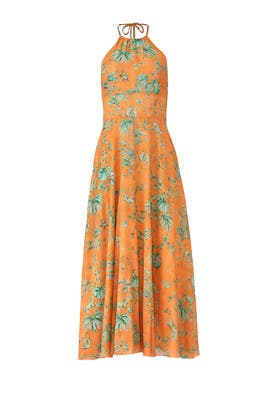 Monkey Print Halter Maxi by RED Valentino
