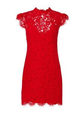 Red Kara Lace Dress by Rachel Zoe
