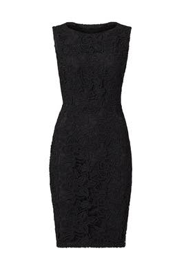 Black Sleek Lace Sheath by Sachin & Babi
