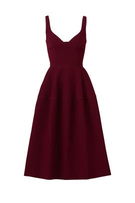 Raisin Full Skirt Dress by Jill Jill Stuart