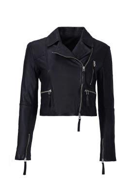Hailey Leather Moto Jacket by Marissa Webb