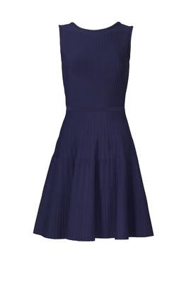 Navy Power Stretch Ballet Dress by Pink Tartan