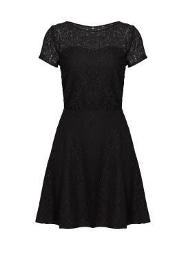 Black Lace Jolene Dress by Slate & Willow