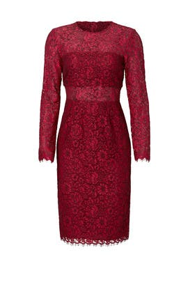 Garnet Illusion Lace Sheath by Shoshanna