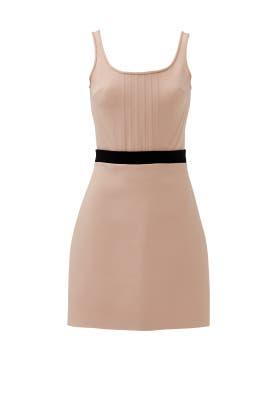 Pink Corset Dress by David Koma