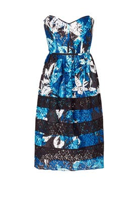 Blue Floral Lace Panel Dress by Parker