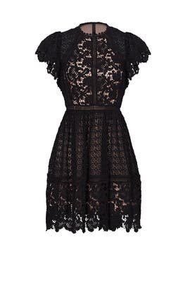 Black Lace Mix Dress by Rebecca Taylor