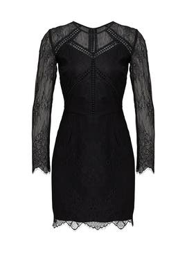 Black Lace Illusion Dress by Greylin