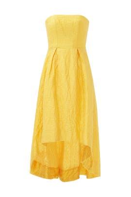 Sunshine Day Gown by ML Monique Lhuillier