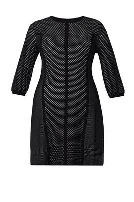 Contrast Dot Mesh Dress by Rachel Rachel Roy