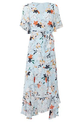 Blue Floral Demi Maxi by Parker