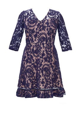 Night Lace Dress by Adrianna Papell