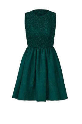Ivy Green Lace Dress by ML Monique Lhuillier